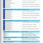 calendario torneo delle regioni